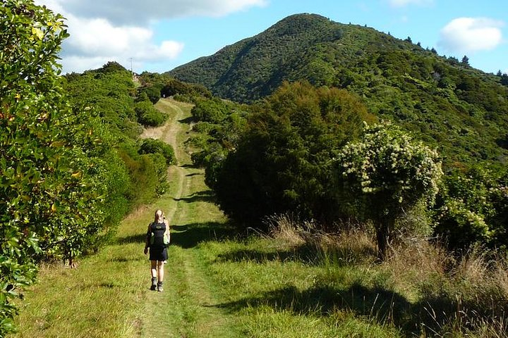 Queen Charlotte Track Four Day Classic Package